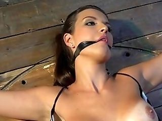 Obedient Dark Haired Takes A Lot Of Chastisement